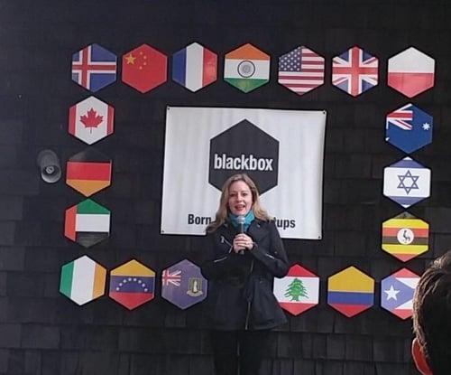 Elisa All Blackbox Pitch